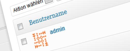 Wordpress admin-Account