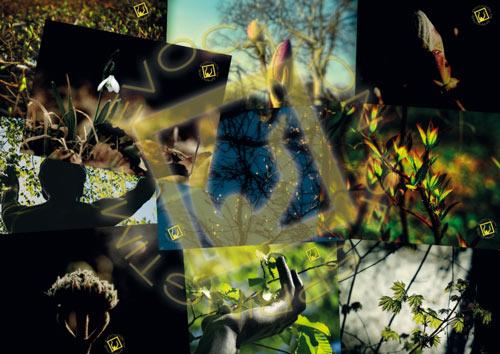 evocation of springtime - Postkartenset